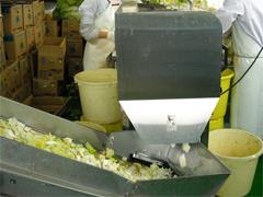 6分の1に刻んだ白菜をスライサーで約4cmにします