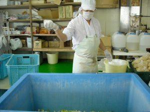 白菜の塩漬けは職人が行います